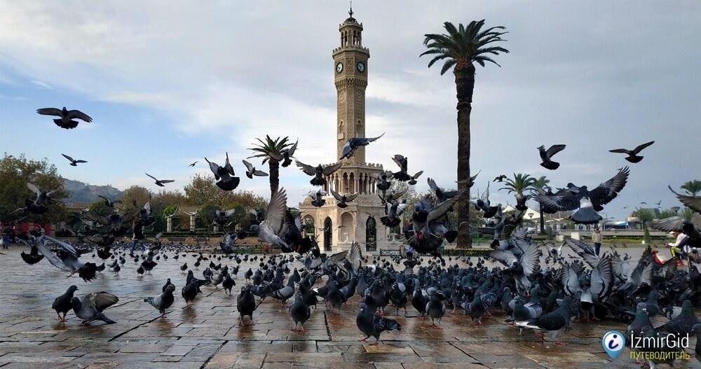 Погода в Измире зимой