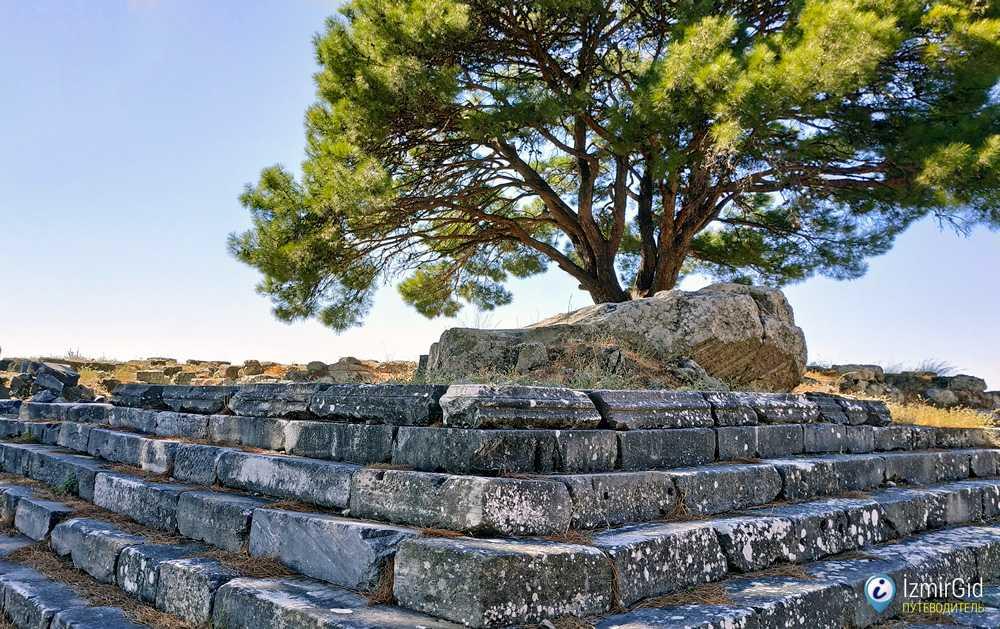Фундамент Пергамского алтаря